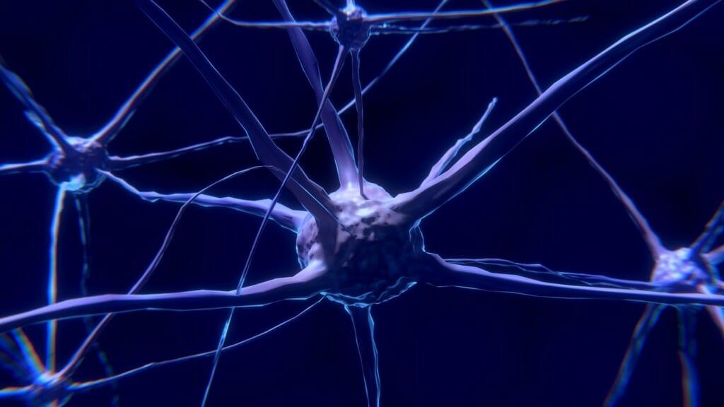 Prevents Neuronal Death
