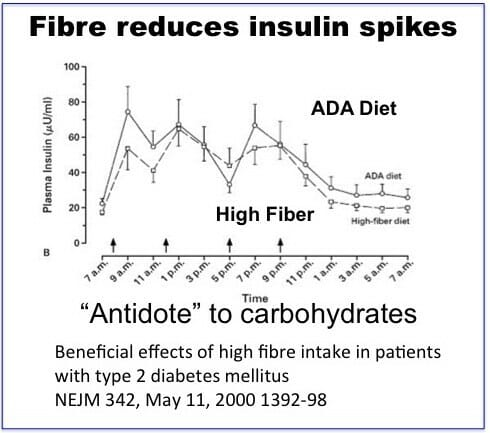 Fiber can reduce insulin spikes