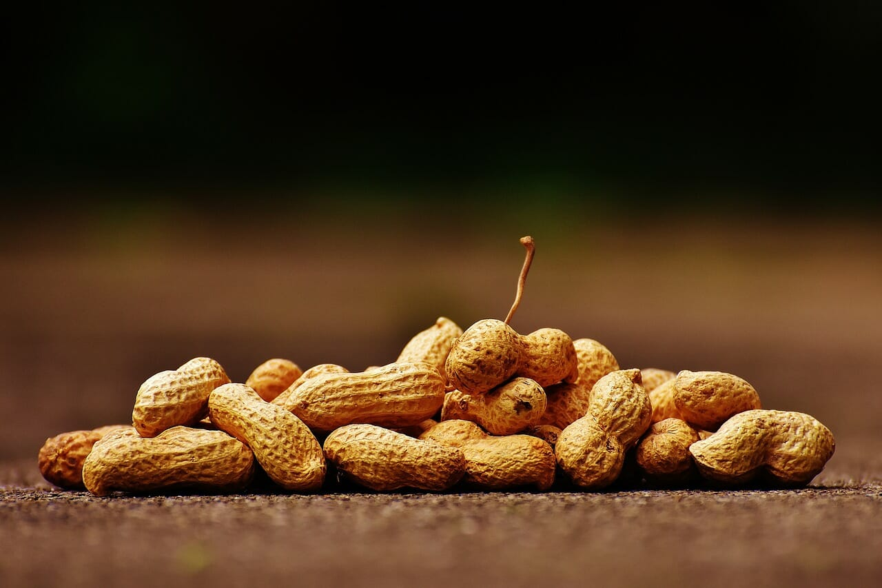 Peanuts are legums and have anti-nutrients