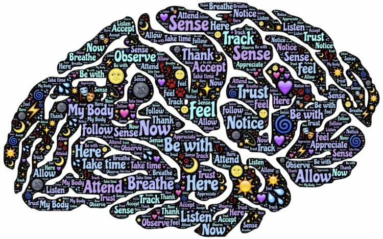 Unlocking the power of your brain
