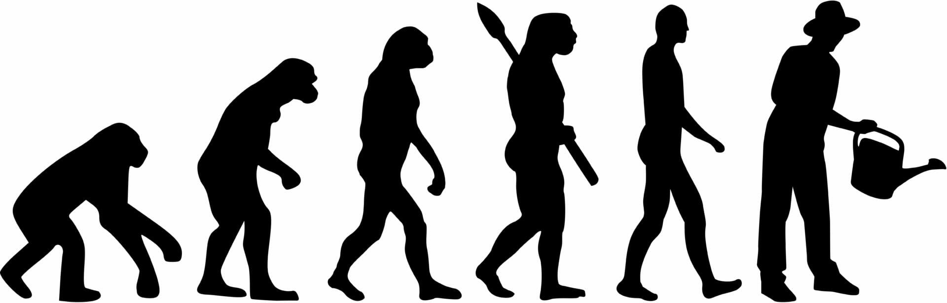 Grains were not a part of the human diet for most of our species' history.