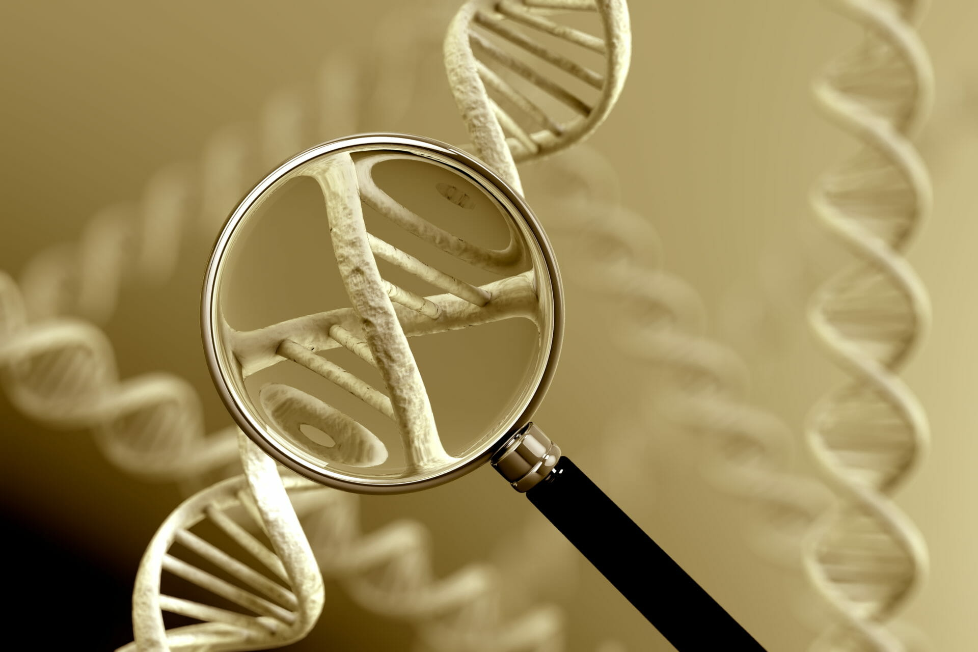 A magnifying glass focussing on a section of a DNA strand