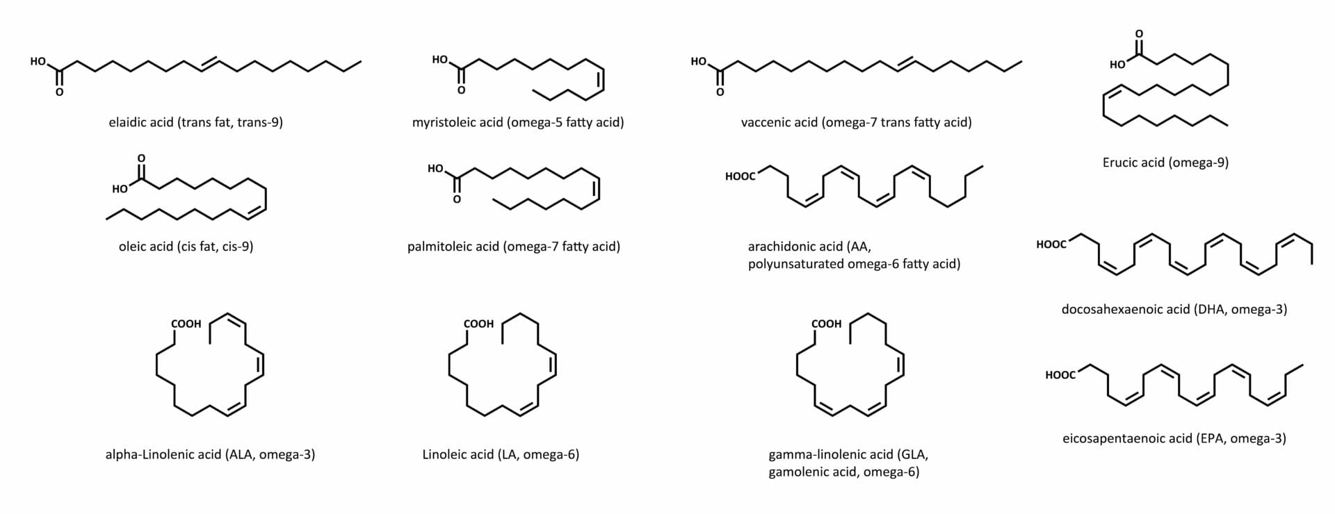 Overview of unsaturated fatty acids