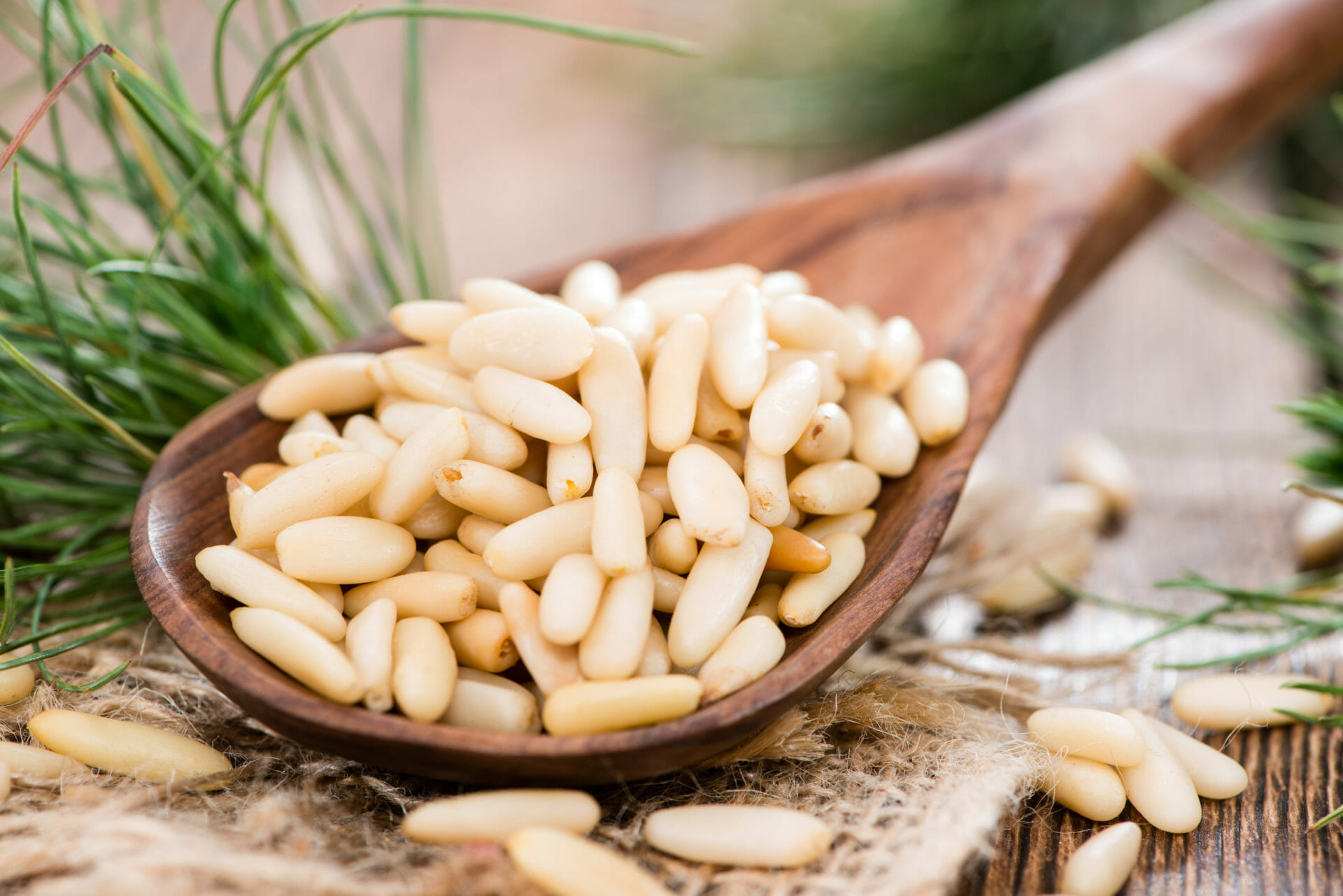 Pine nuts on a wooden spoon